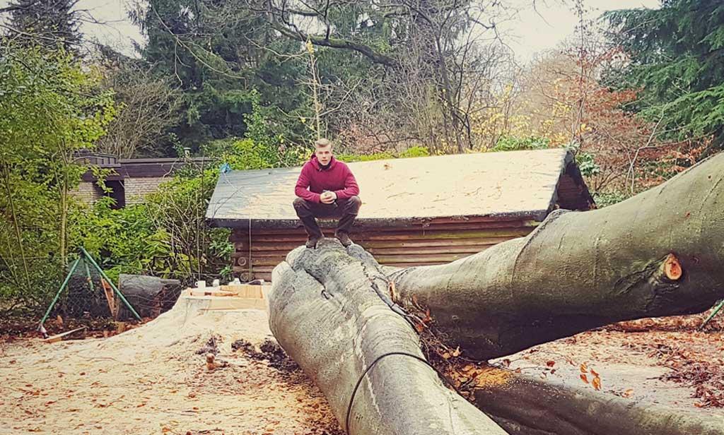Baumpflege Krüger